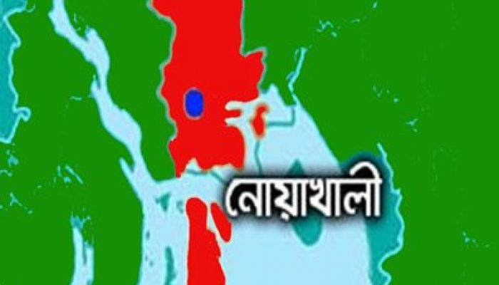 নোয়াখালীতে পুলিশের ওপর হামলার ঘটনায় মামলা